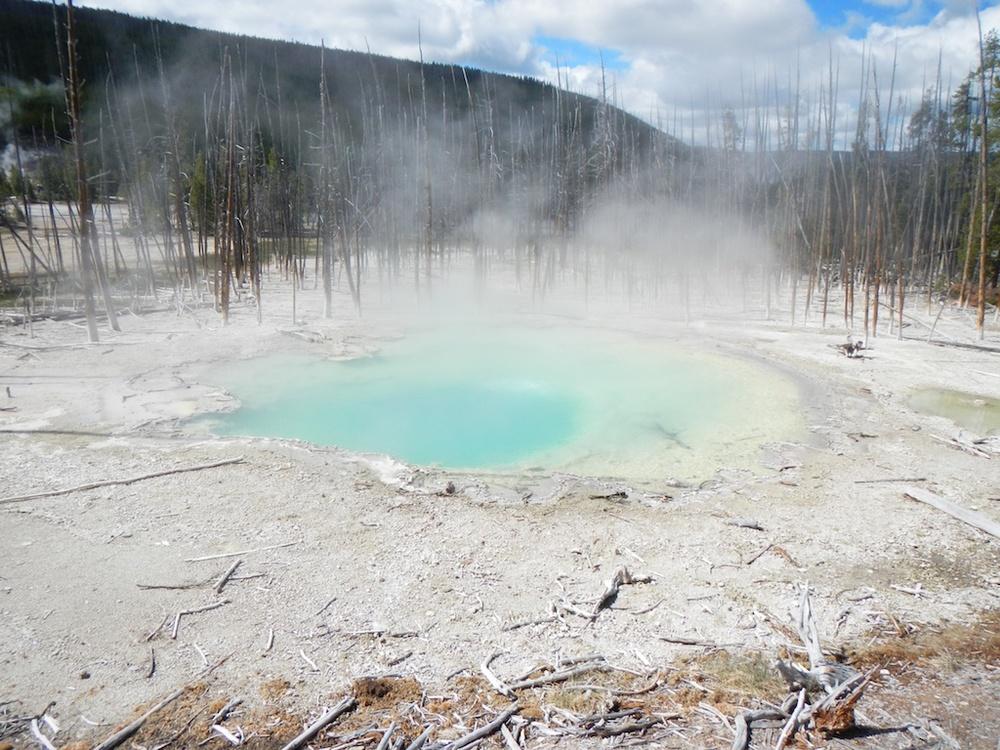 Yellowstone NP.jpg
