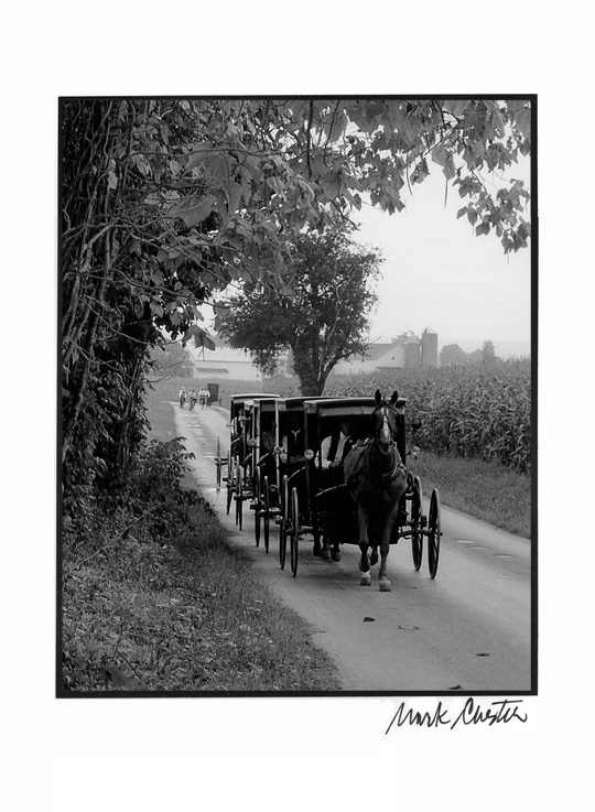 Horse and Buggy Caravan