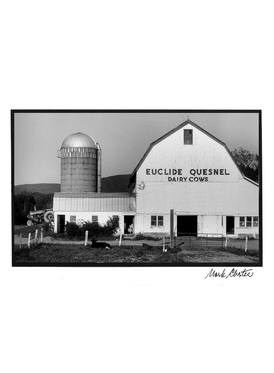 Euclide Quesnel Dairy Cows of Vermont