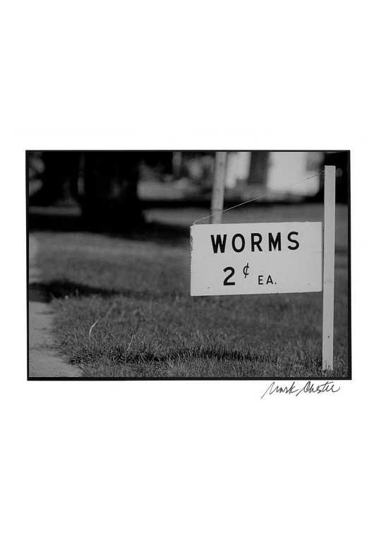 Worms 2 ¢