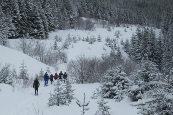 SnowshoeingNearM-A_55-590x393.jpg