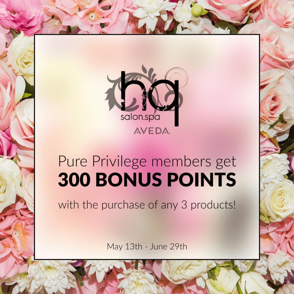 300 bonus points.png
