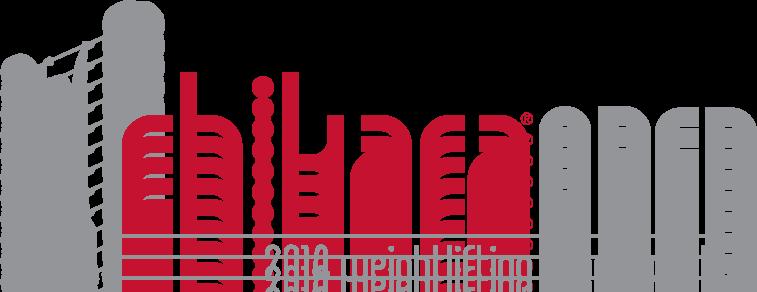 14_1009 Chikara Open_Horizontal Logo.png