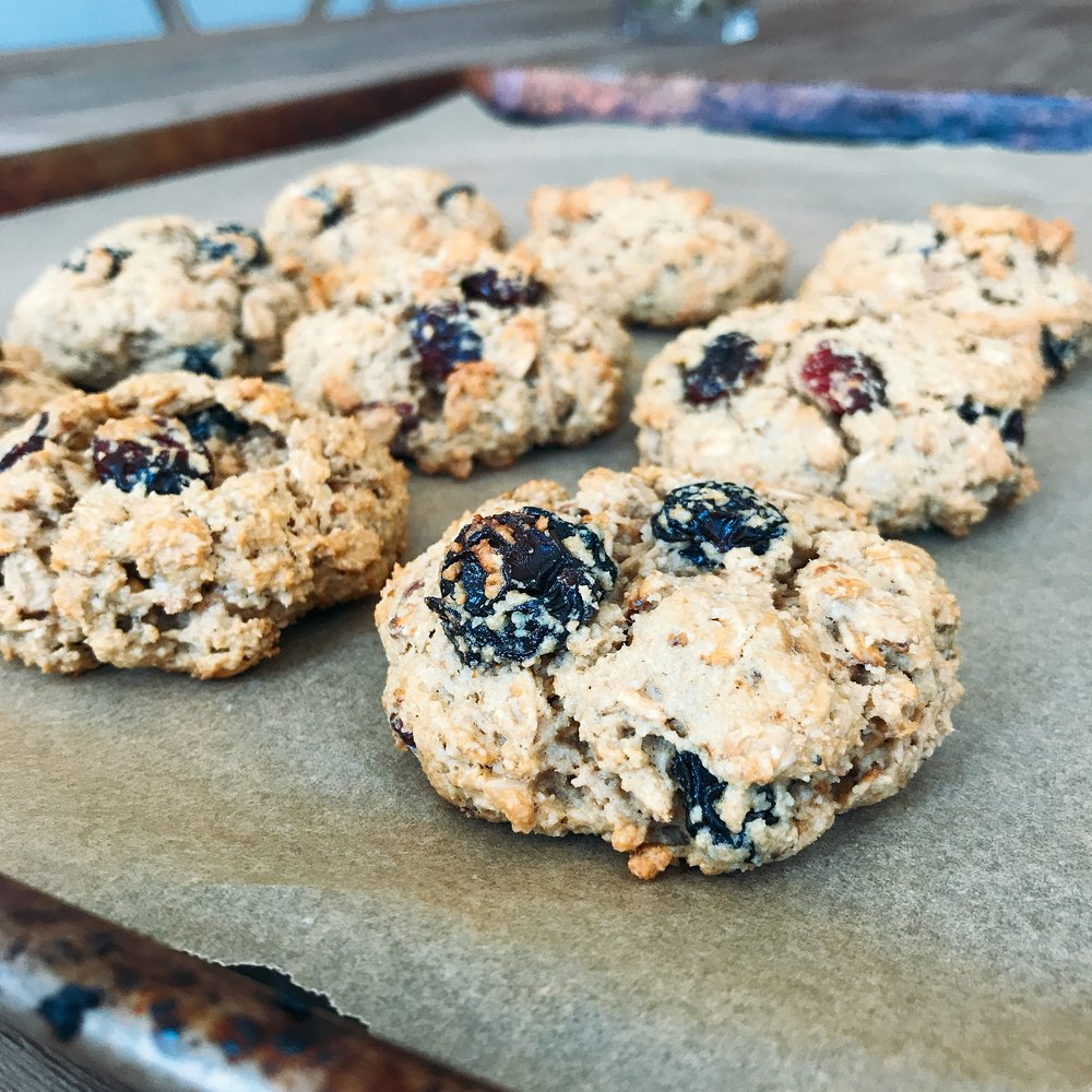 Crunchy healthy oatmeal raisin cookies that are dairy free, gluten free, and so simple to make!