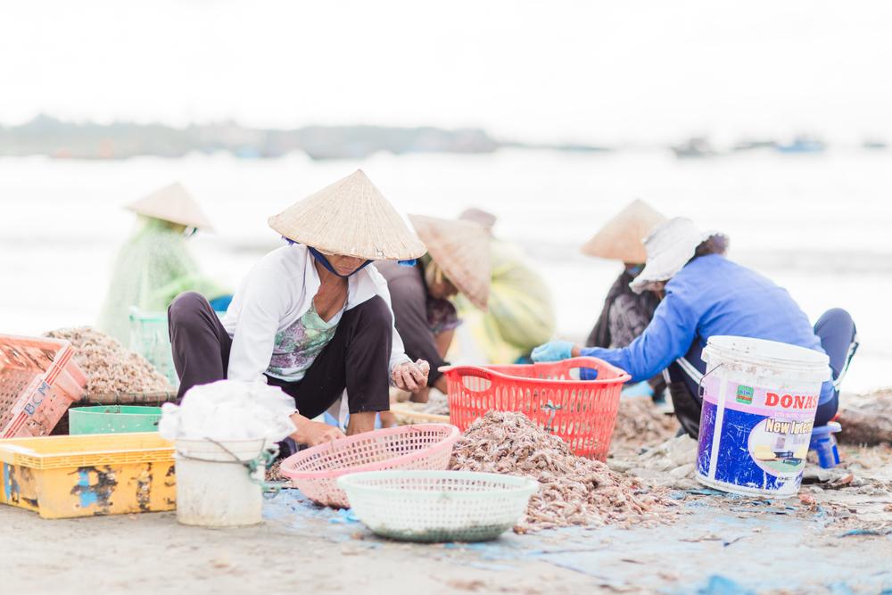 Da Nang Vietnam-9050.jpg