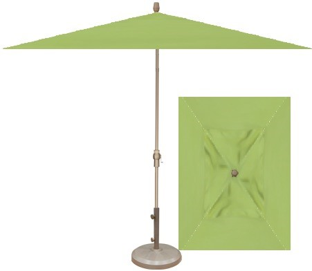 kiwi umbrella with champange frame.jpg
