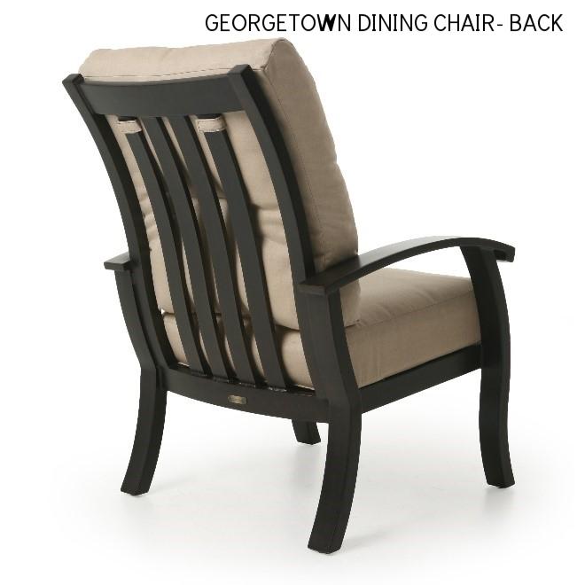 Georgetown Dining Chair-back.jpg
