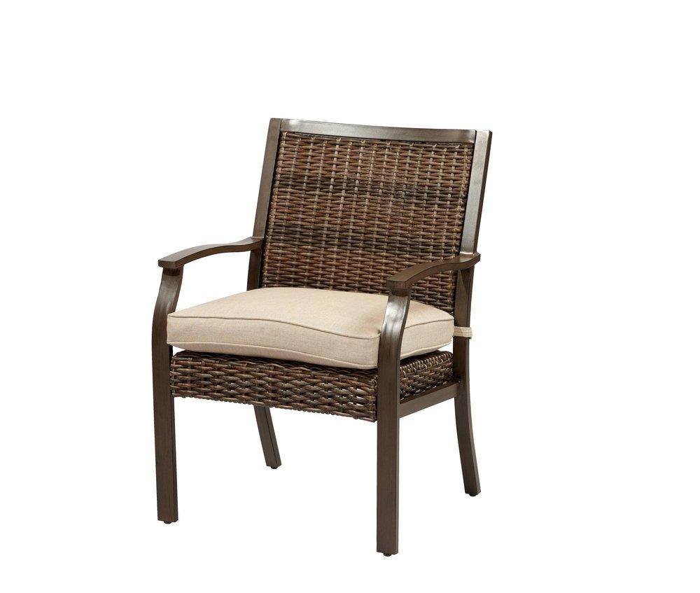 Trenton Woven Dining Chair