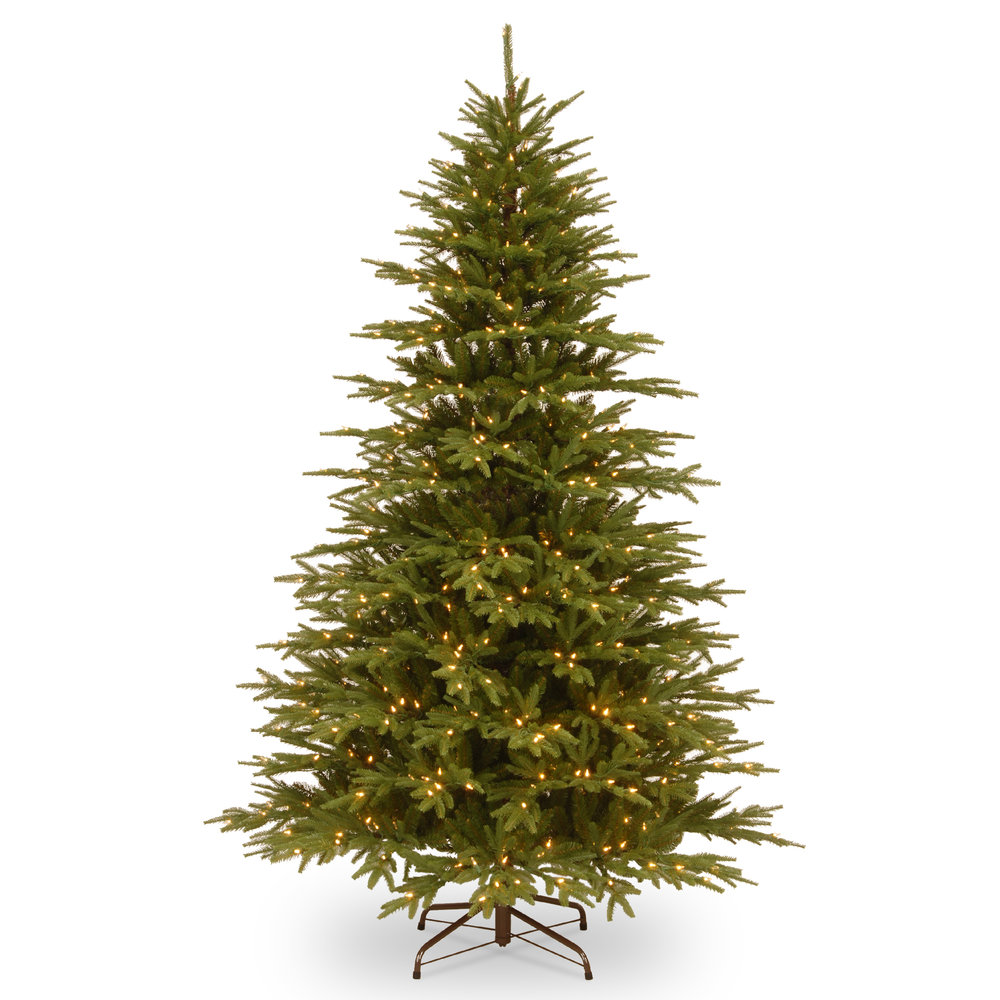 VIRGINIA FIR MEMORY SHAPE