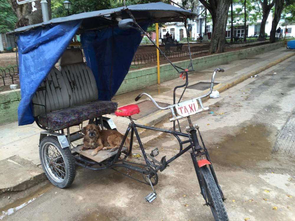 pedi-cab-havana-cuba-june2015.jpg