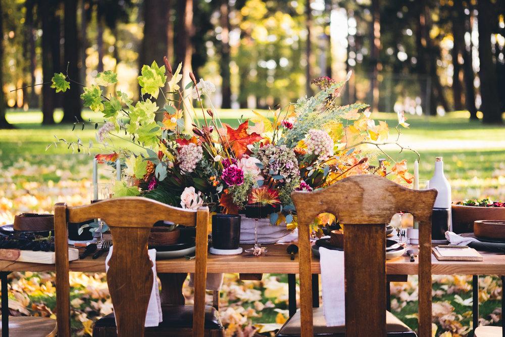 autumn_shoot-77.jpg