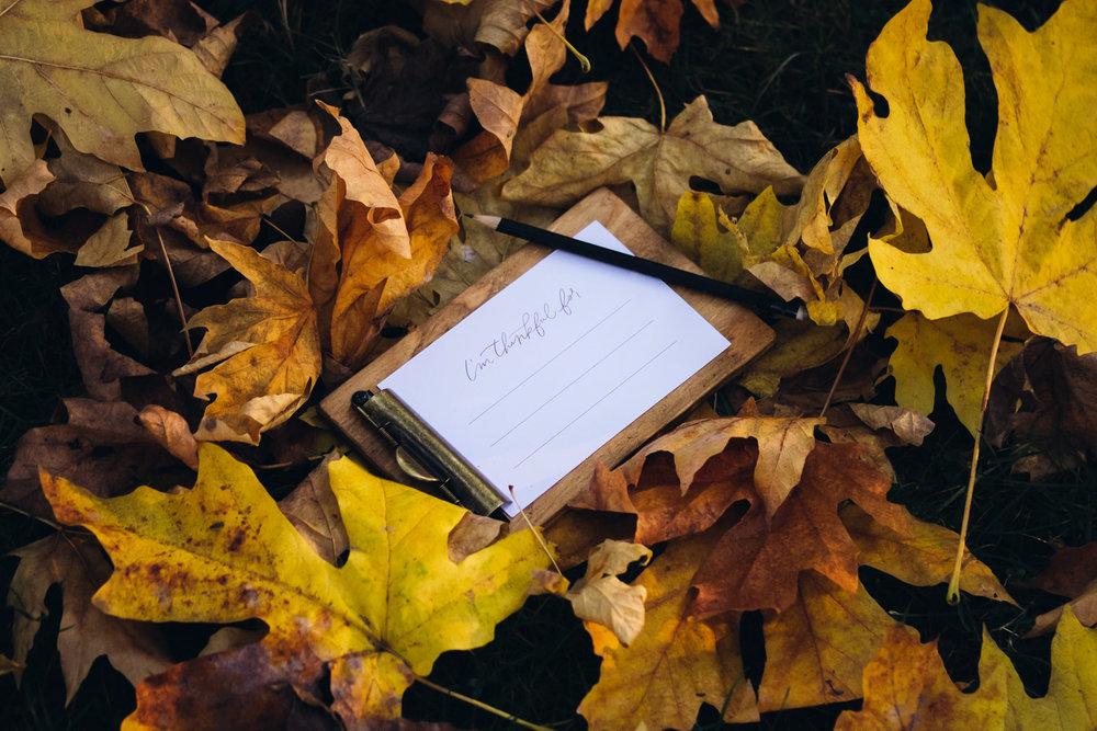 autumn_shoot-62.jpg