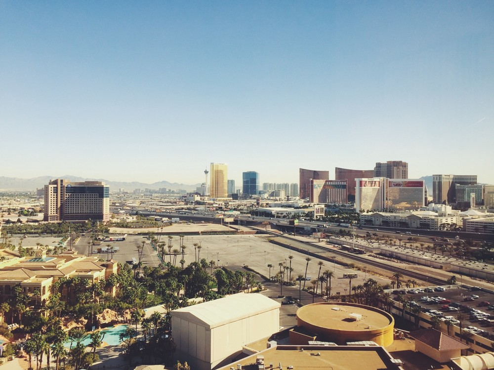 We flew to Las Vegas for a meeting…