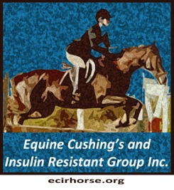 The ecirhorse.org website is complimentary to the  Equine Cushing's and Insulin Resistance  outreach group.   Visit the Yahoo Outreach Group .  Equine Cushing's Disease, also known as Pituitary Pars Intermedia Dysfunction (PPID), and Insulin Resistance (IR) are distinctly separate conditions. The often overlapping signs and symptoms can make diagnosis difficult. This website is intended to provide detailed information for correct Diagnosis, Diet, Trim and Exercise.  With over 12,000 international members, the  ECIR yahoo outreach group  is arguably the world's largest field trial in the world and provides the latest research, medication information & dietary recommendations for horses with these conditions.  We are proud to announce that in March of 2013, the Equine Cushing's and Insulin Resistance Group Inc., was approved as a 501(c)3 public charity and can now receive tax deductible contributions.  The mission of the ECIR Group Inc. is to improve the welfare of equines with metabolic disorders via a unique interface between basic research and real-life clinical experience.  Prevention of laminitis is the ultimate goal.  The ECIR Group serves the scientific community, practicing clinicians and owners by focusing on investigations most likely to quickly, immediately and significantly benefit the welfare of the horse.
