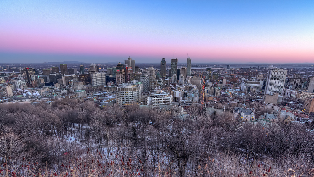 20141230_Downtown Montreal from Mount Royal_IMG_0196hdr-M.jpg