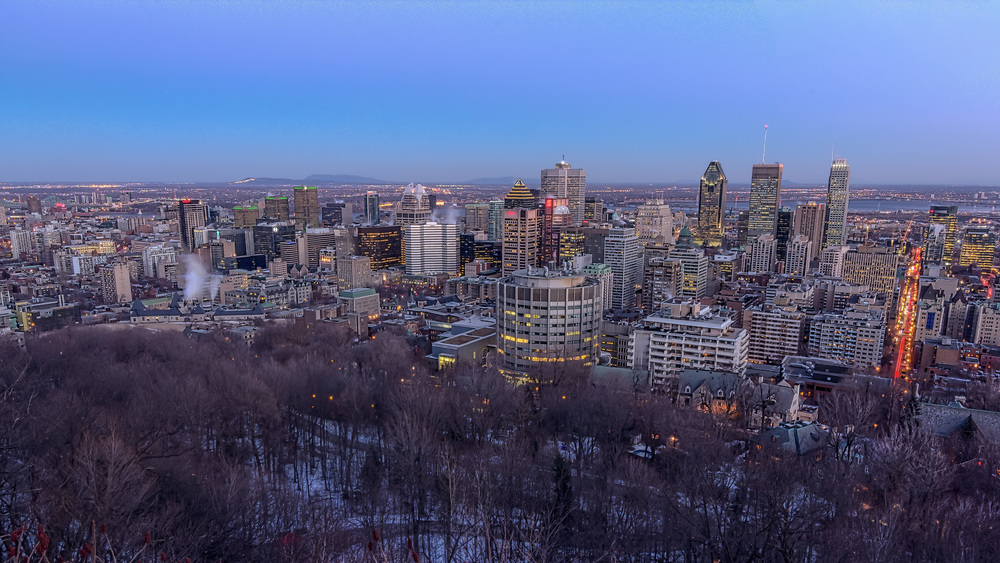 20141230_Downtown Montreal from Mount Royal_IMG_0226hdr-M.jpg