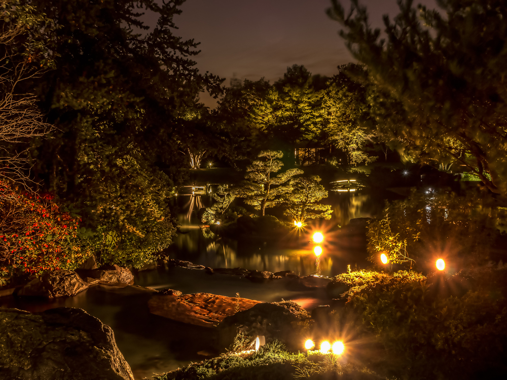 20140920_Botanical Garden-Gardens of Light_IMG_6033_4_5hdr-M.jpg
