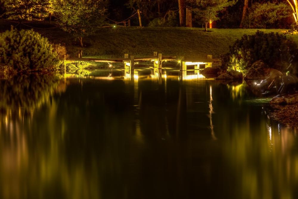 20140920_Botanical Garden-Gardens of Light_IMG_6038-M.jpg