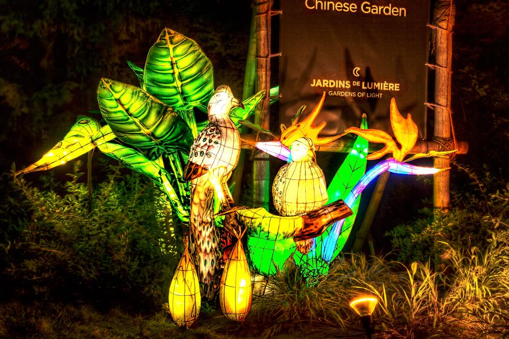 20140920_Botanical Garden-Gardens of Light_IMG_6051_2_3hdr-M-M.jpg