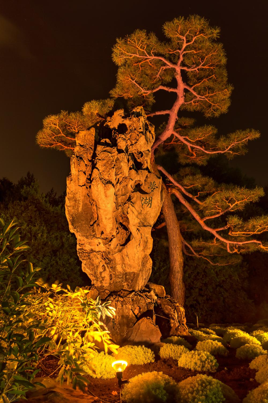 20140920_Botanical Garden-Gardens of Light_IMG_6056_5_4hdr-M.jpg