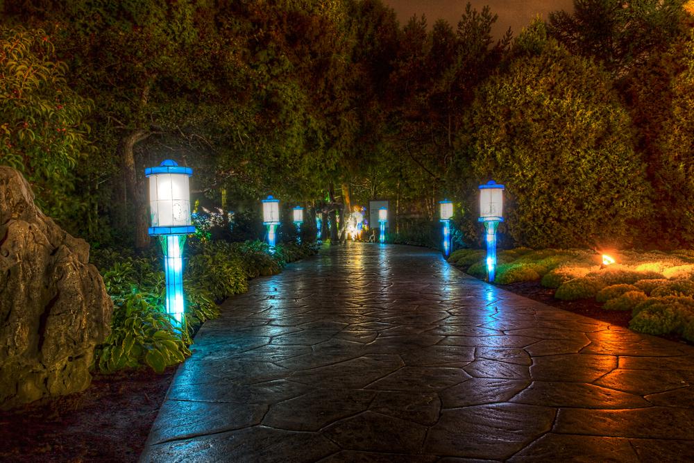 20140920_Botanical Garden-Gardens of Light_IMG_6057_8_9hdr-M.jpg