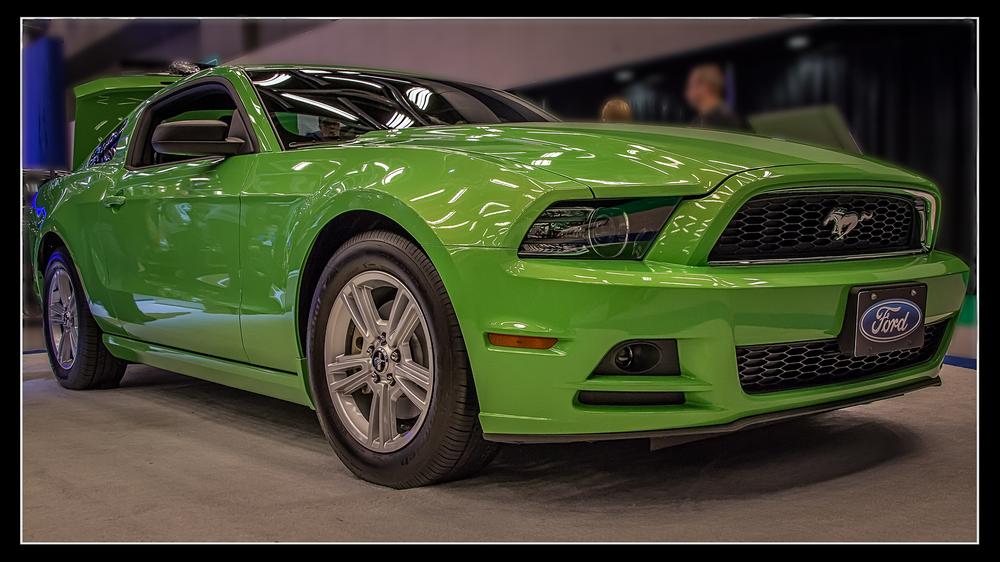 20140126_Auto Show 2014_IMG_2467.jpg