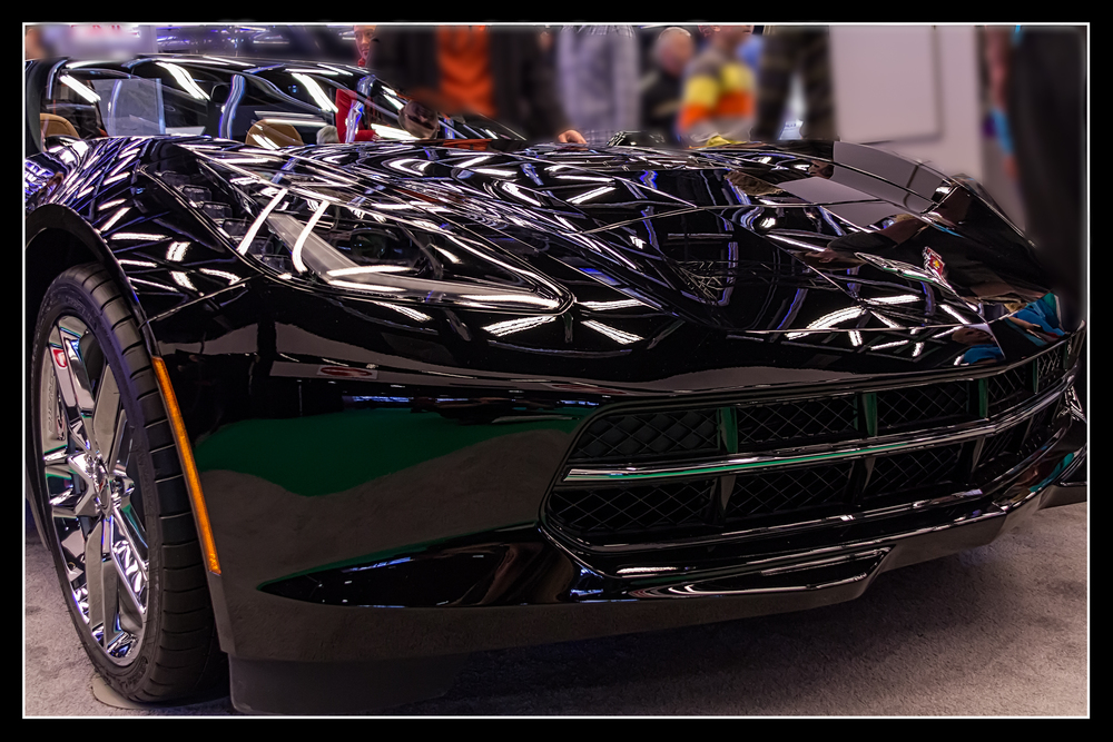 20140126_Auto Show 2014_IMG_2455.jpg