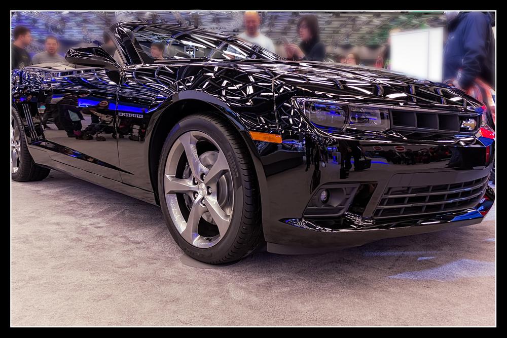 20140126_Auto Show 2014_IMG_2458.jpg