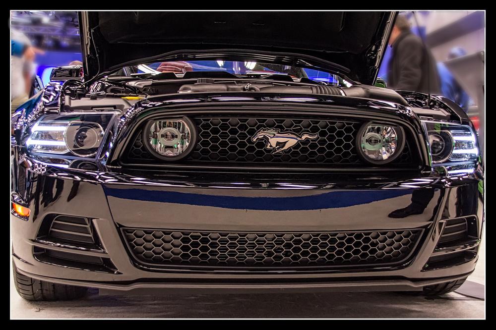 20140126_Auto Show 2014_IMG_2466.jpg