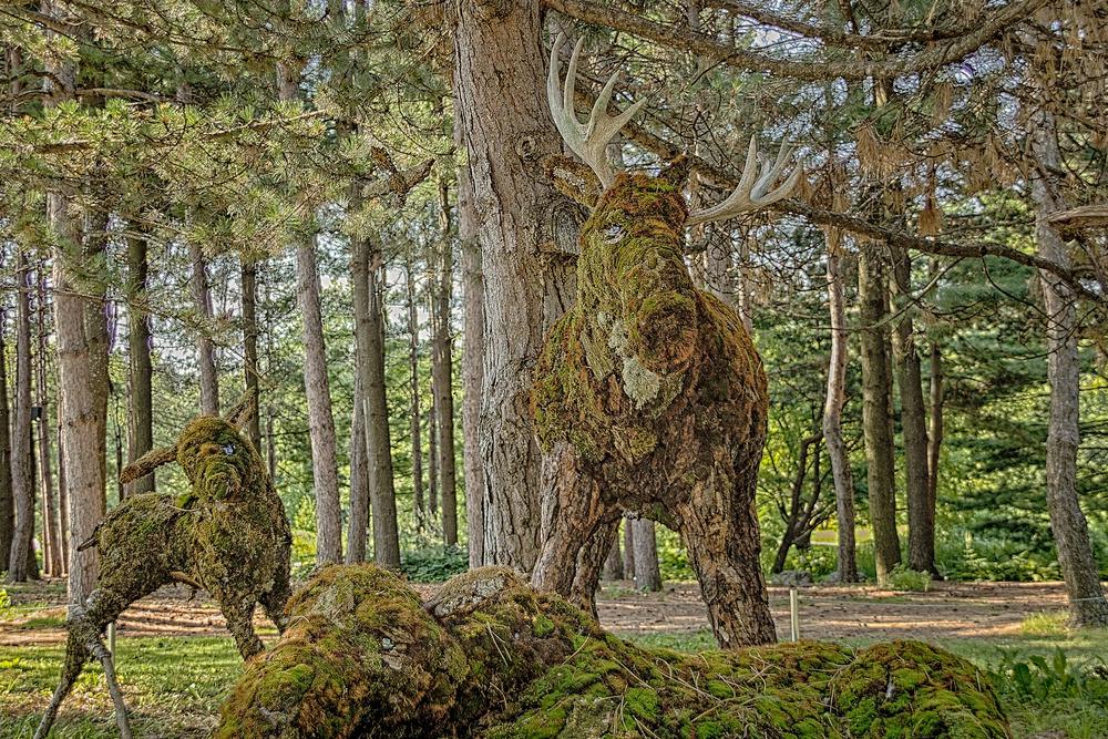 20130731_Botanical Gardens_IMG_0557_HDR.jpg