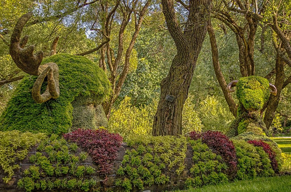 20130731_Botanical Gardens_IMG_0574_HDR.jpg