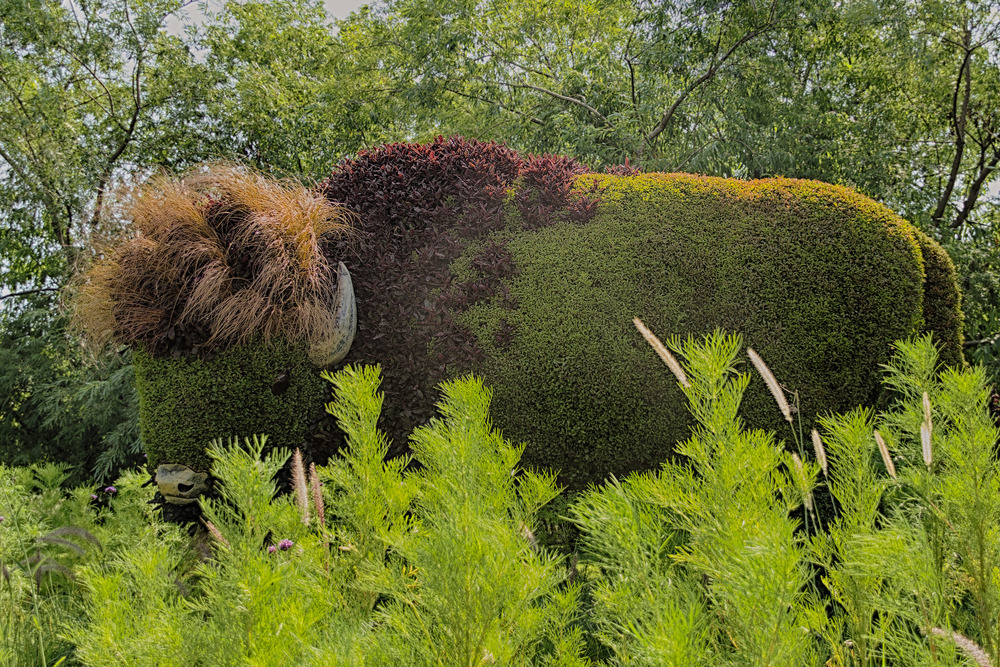 20130731_Botanical Gardens_IMG_0604_HDR-Edit.jpg