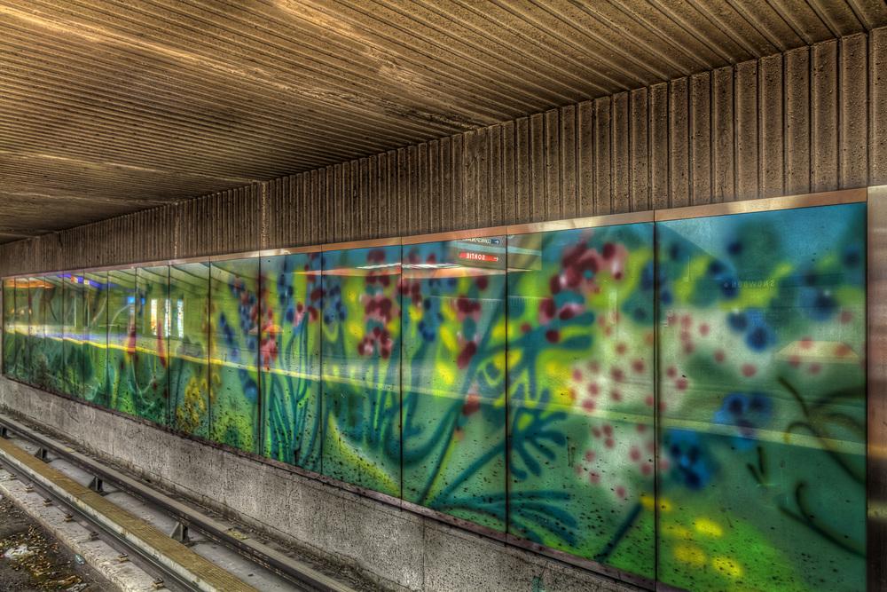 150314_Cote des Neiges_Snowdon_Villa Maria Metro Art0019hdr-M.jpg