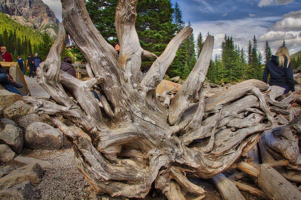 Lake Louise_Lake Moraine_Banff-177_AuroraHDR_HDR.jpg