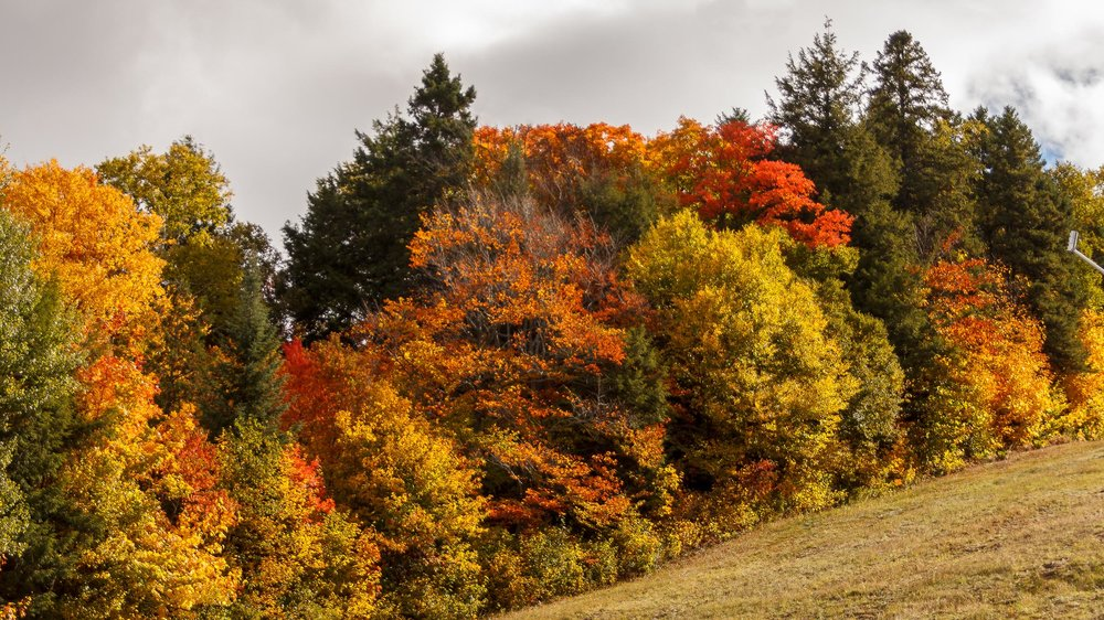 Fall Colors Mont Saint Sauveur-5-Edit.jpg