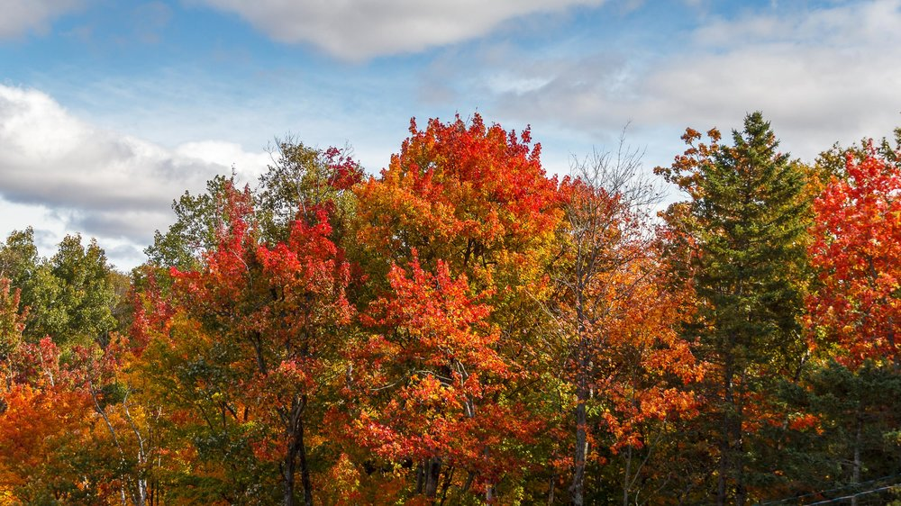 Fall Colors Mont Saint Sauveur-17.jpg