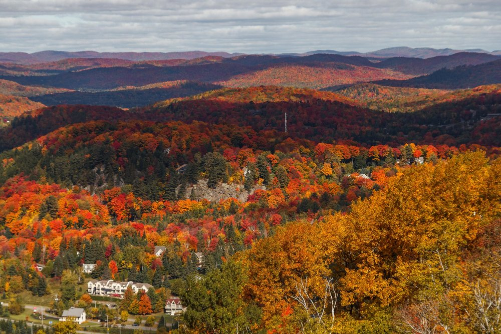 Fall Colors Mont Saint Sauveur-46.jpg