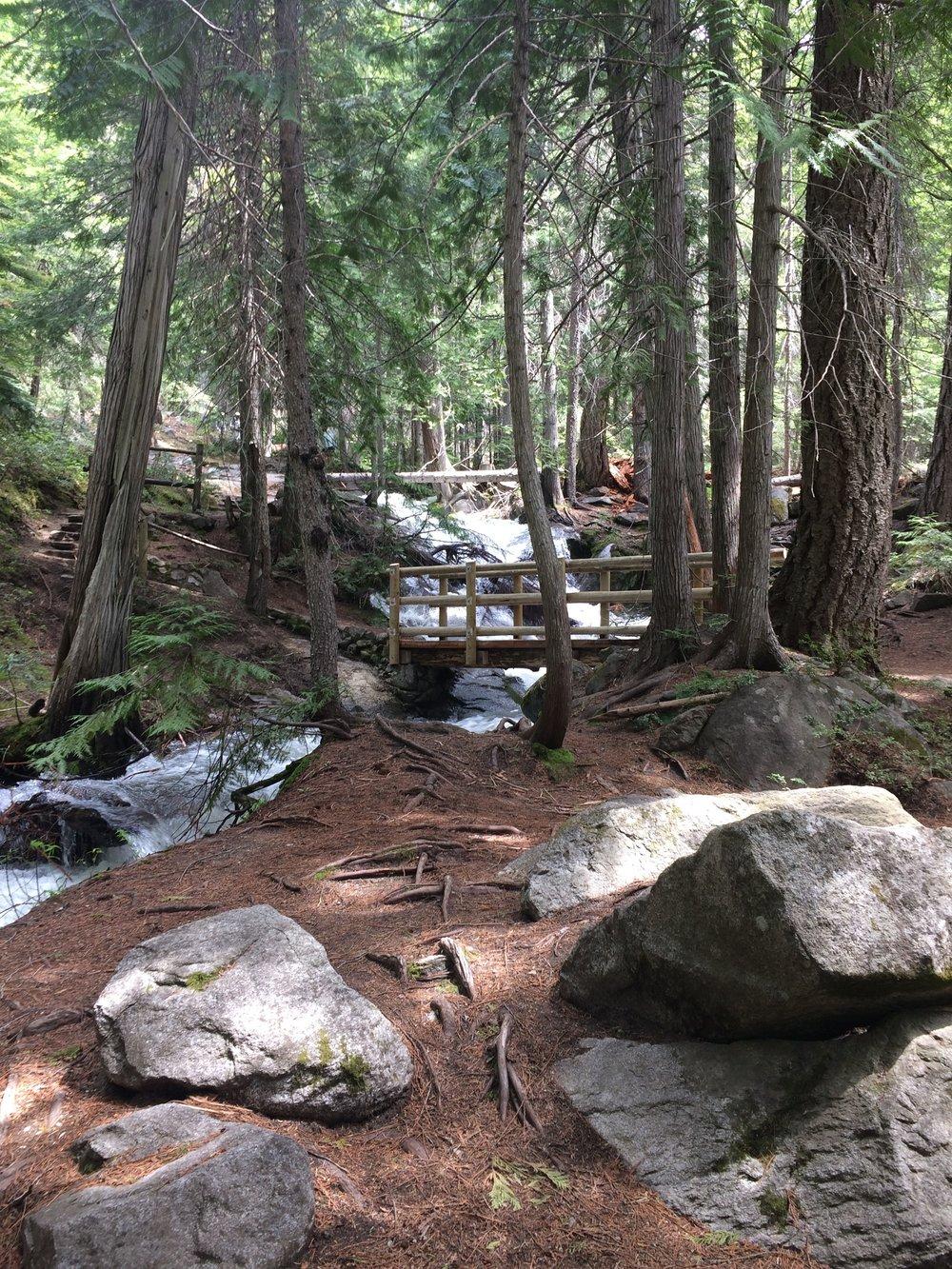 Silver Falls Hike (3).JPG