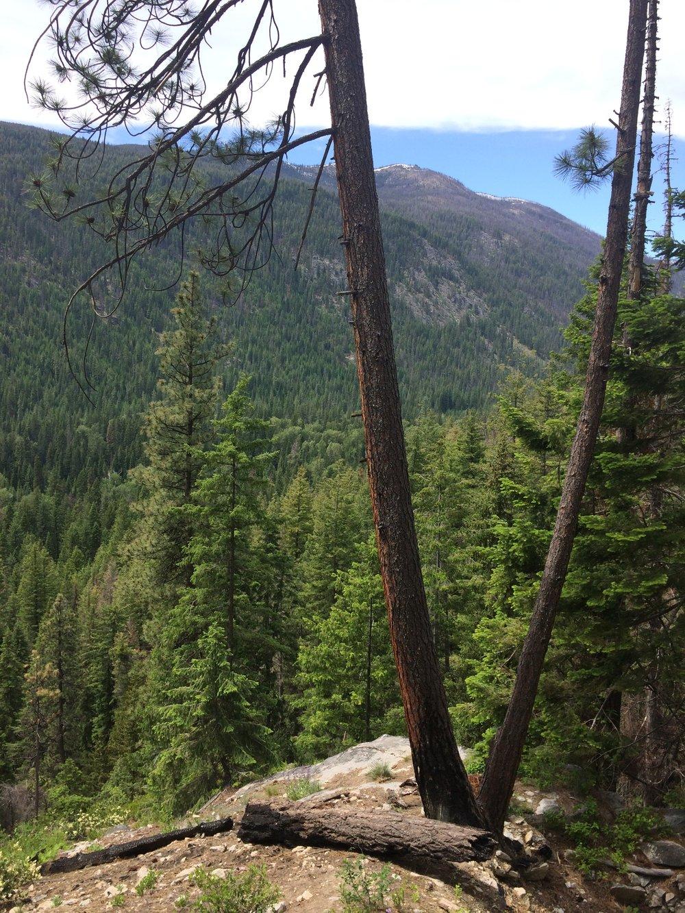Silver Falls Hike (17).JPG