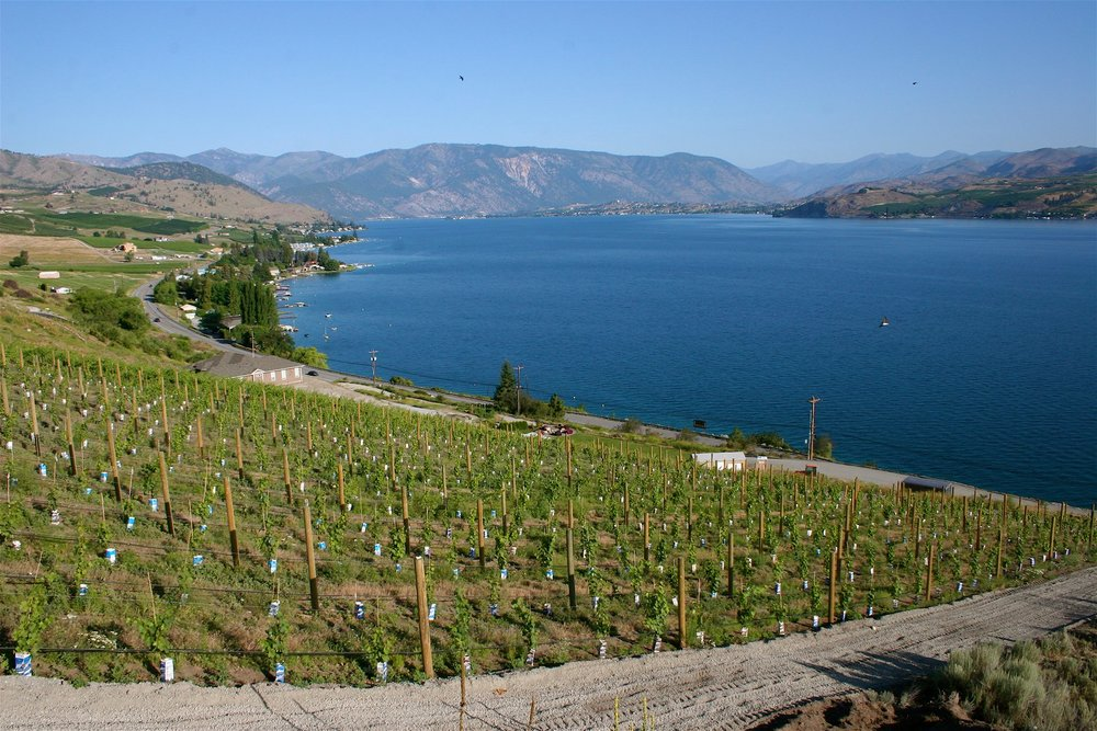 MELLISONI VINEYARDS FB 1.jpg