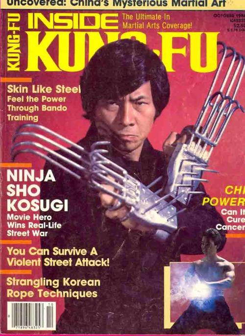 Childhood hero, Sho Kosugi.