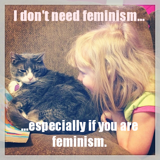 confusedcatsagainstfeminism: Submitted by Team Ham and Cows — Confused Cats Against Feminism is a project of We Hunted the Mammoth