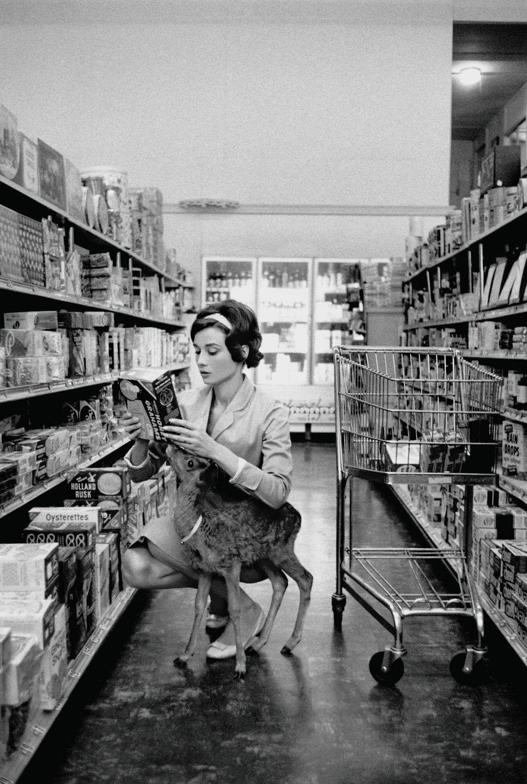 Audrey Hepburn and her pet deer, Ip.