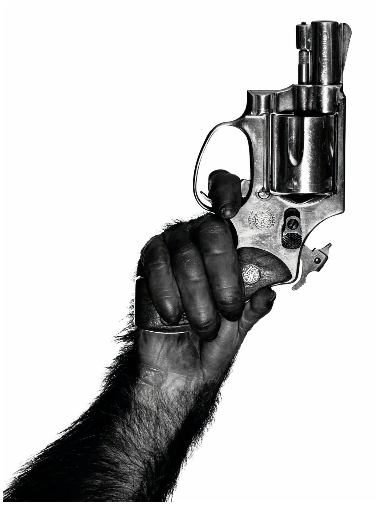 Monkey With Gun, New York, 1992 - Albert Watson