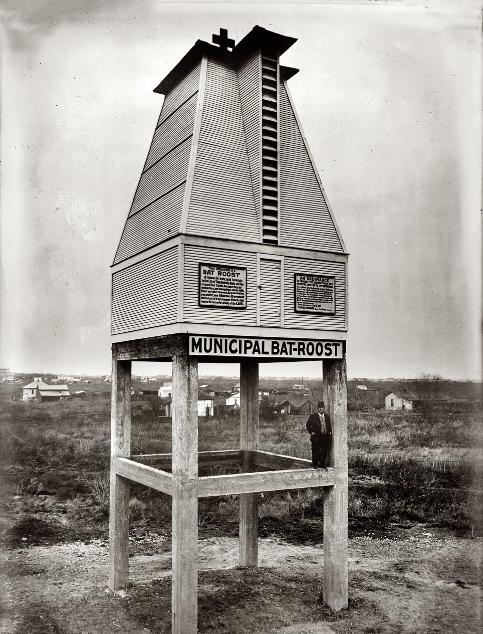 "watershedplus :     In the 1900's Dr. Charles Campbell, from San Antonio, Texas, advocated that bats could control mosquito populations, and therefore malaria, with less expense and human effort than other methods.  He came up with a pioneering design for a Bat Roost equipped with ""all the conveniences any little bat heart could possibly desire"".   The first one was built in spring 1911 next to Mitchell's Lake, ten miles south of San Antonio. Malaria cases in the neighborhood decreased sharply and the Campbell tower was followed by more than a dozen more built to the same design, one as far afield as Italy. They were used until the 1950's.   From  Venue  and  here"