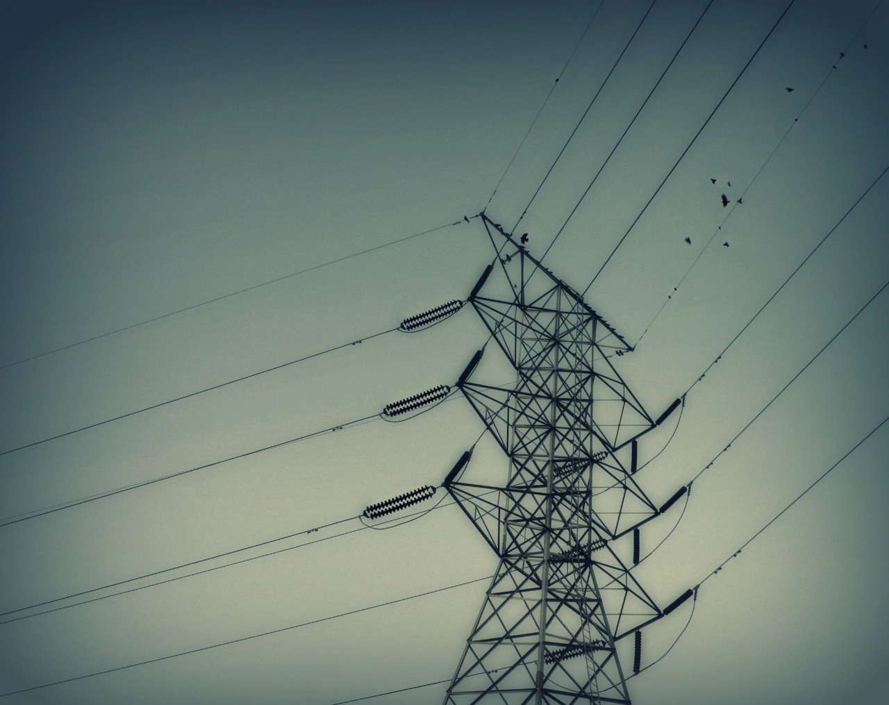 jillallynstafford: you're electric, out of sight. instant pylon reblog