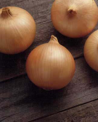 Candy Intermediate Onion
