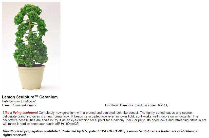 tm plant variety.JPG