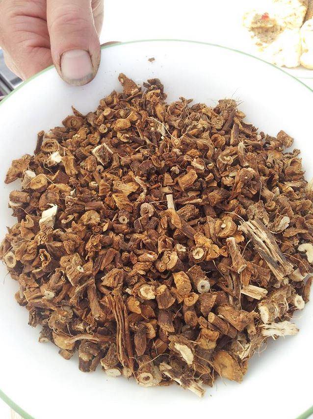 roasted and dried dandelion root after spring harvest