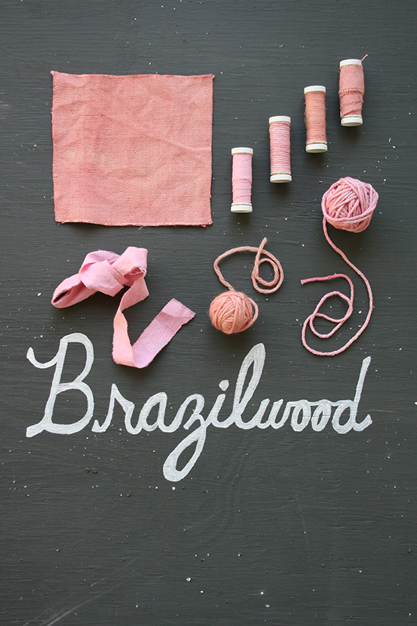 brazilwood_dyestudy_web.jpg